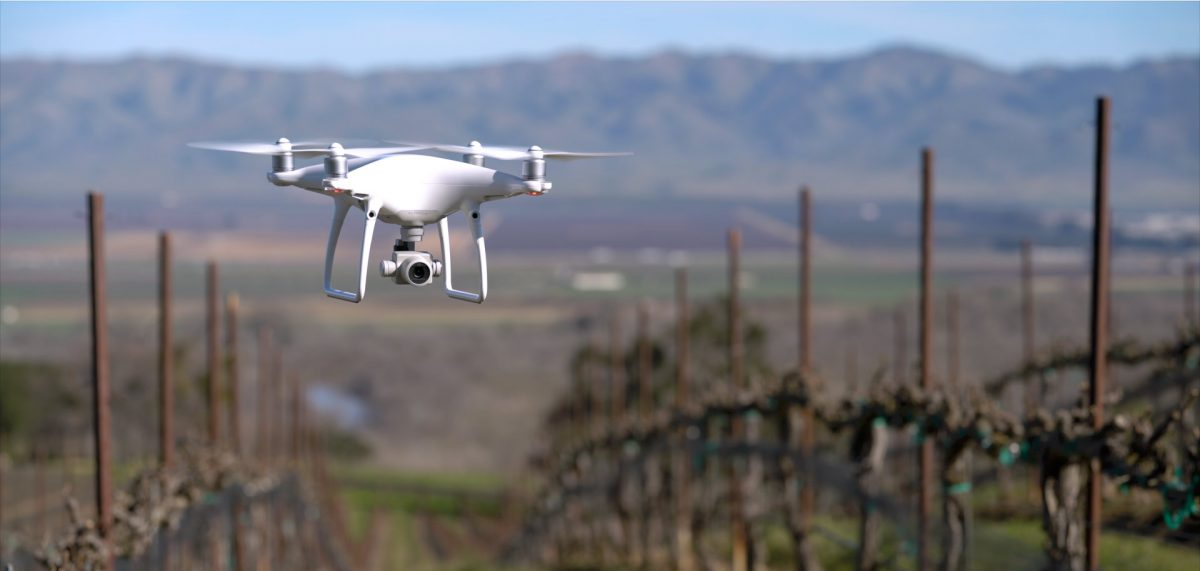 Drone in an SLH vineyard.