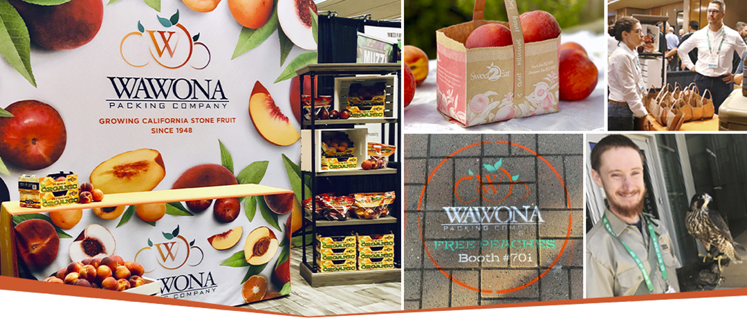 Examples of guerrilla marketing at a trade show, including signs, branded totes, and chalk art.